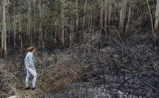 Este miércoles pueden regresar las lluvias, tras tres días de incendios