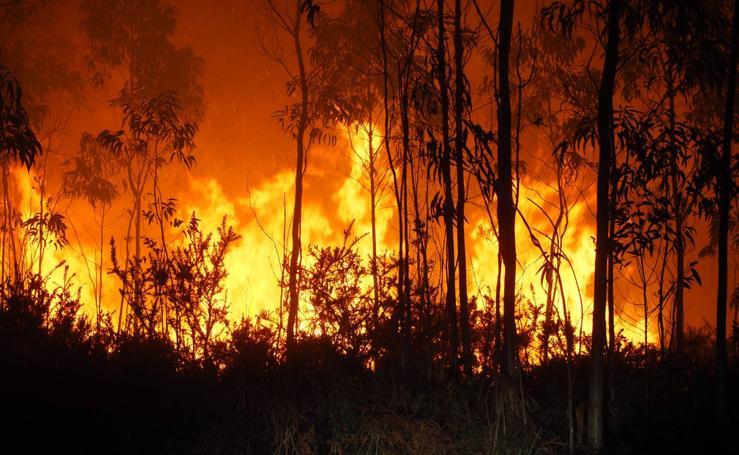 Nuevos incendios en Cantabria