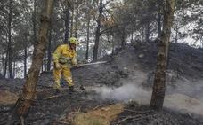 Revilla anuncia que dentro de unos días se sabrá que hay más investigados por incendios