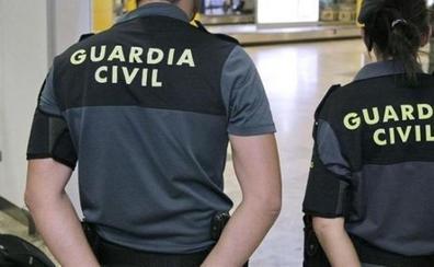 Detenida una mujer en Barajas con cinco animales muertos en su maleta