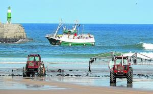 Las marejadas «regalan» una marea inesperada de algas