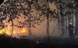 Extinguidos cuatro incendios forestales en Vega de Pas, Valdáliga y Soba