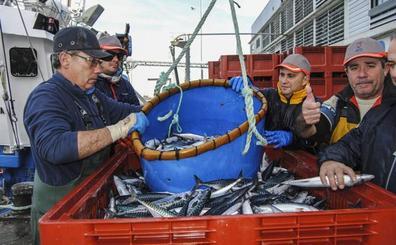 Los pescadores cántabros dicen que la cuota adicional de verdel es «una miseria»