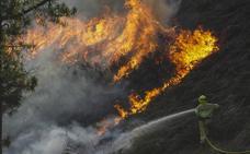 Cinco fuegos provocados continúan activos y el Gobierno pide ayuda para identificar a los incendiarios