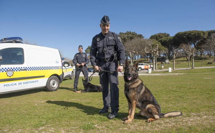 Dos perros para la Policía Local de Santander