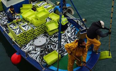 Los pescadores cántabros anuncian «duras» movilizaciones si el Gobierno modifica el Plan de Gestión del verdel