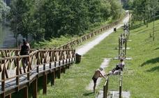 Ecologistas alertan del impacto visual que supondrá la pasarela sobre el río Saja-Besaya