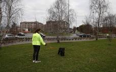 Ninguna empresa se interesa por la construcción del parque para perros de Torrelavega