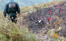 La Guardia Civil investiga a un hombre de 65 años como presunto autor de dos incendios forestales en Liérganes