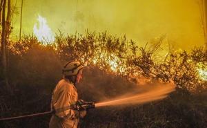 Los incendios de febrero y marzo calcinaron 11.000 hectáreas en Cantabria, el doble que en todo 2018