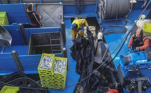 La avalancha de bocarte colapsa los puertos y obliga a amarrar la flota hasta el lunes