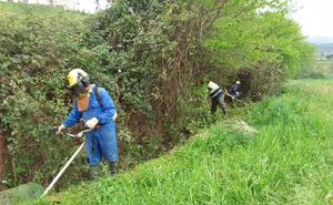 Confederación activa la limpieza de cauces en la comarca oriental