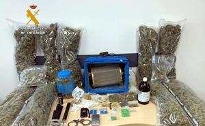 Encuentran cocaína, éxtasis y potenciadores sexuales al desmantelar una plantación de marihuana en Sonabia