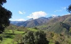 La ruta circular de Lerones, un paseo con olor a romero