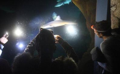 Los museos de Santander abren de noche para los jóvenes, y es gratis