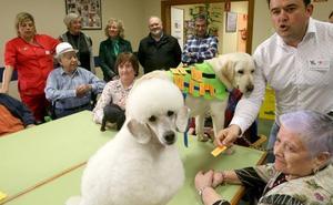 Díaz Tezanos destaca los beneficios de las terapias con animales para mejorar la calidad de vida de los mayores