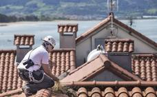 Santoña realizará una nueva campaña de control de gaviotas y palomas
