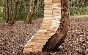 'Escrito en las hojas', cita de Espacio Alexandra con PHotoEspaña