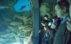 Más de 12.600 personas han visitado los museos y cuevas de Cantabria en Semana Santa