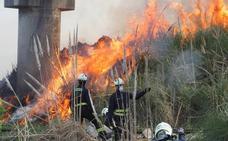 Un espectacular incendio de plumeros causa una gran humareda en la A-67