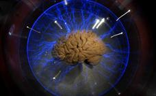 Crean un traductor que convierte las señales cerebrales en frases