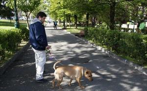 Medio Ambiente da luz verde a la nueva ordenanza de bienestar animal
