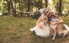 Llevar a mi perro a mi boda «sí, quiero»