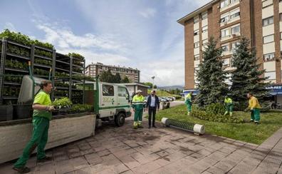 Operarios del Serca plantan 50.000 flores de temporada en Torrelavega