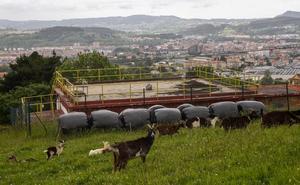 El Gobierno licita la obra para garantizar el suministro de agua en las zonas altas de Torrelavega