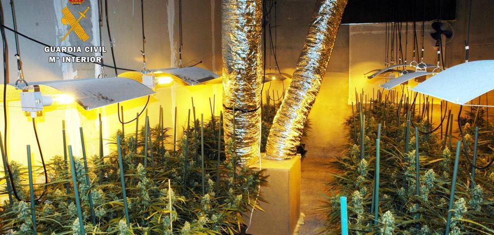 Desmantelado un «sofisticado» laboratorio de marihuana en Parbayón