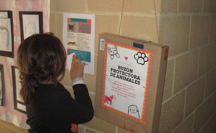 Escolares de Ajo se vuelcan con los derechos de las mascotas