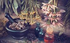 Las hierbas aromáticas, la base de un buen vermut
