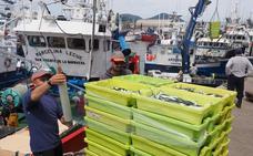 La flota cantábrica concluye la costera del bocarte con 21.000 toneladas, 7.782 descargadas en Cantabria