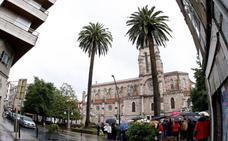 Torrelavega recuerda la singular historia de las palmeras de la iglesia de la Asunción