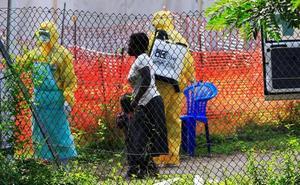 La OMS cree que los nuevos casos de ébola no son una «emergencia mundial»