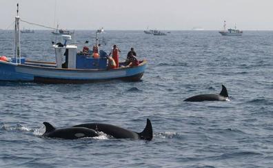 'Encuentro de los mares': Por una pesca más sostenible y auténtica