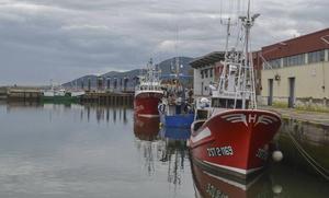 Las cofradías critican que «tener que fichar en los barcos es un despropósito»