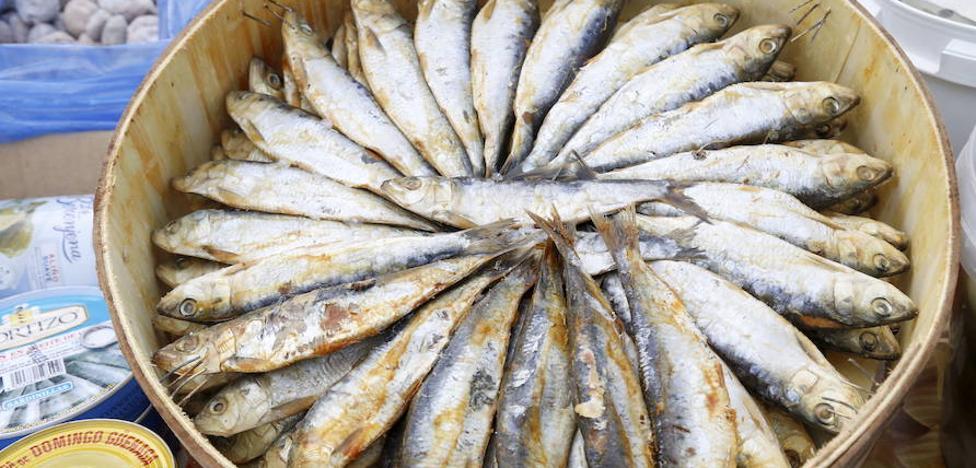 ¿Conoces las propiedades que tienen las sardinas?