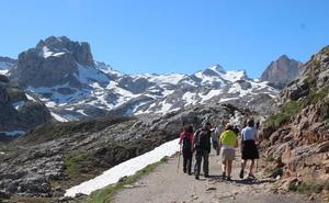 El Parque de Picos de Europa oferta cinco rutas gratuitas por Liébana