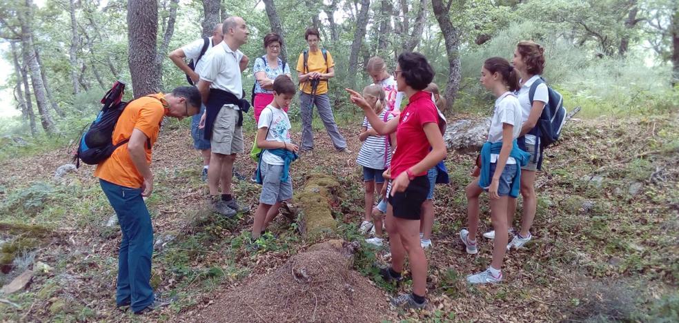 Naturea Cantabria ofrece 19 actividades gratuitas para descubrir la naturaleza de la región