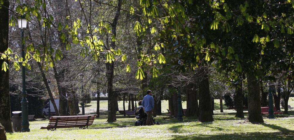 Torrelavega contará este año con el primer plan de gestión de zonas verdes