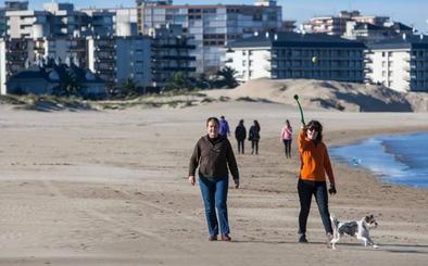 Laredo creará una zona acotada para perros en la playa Salvé