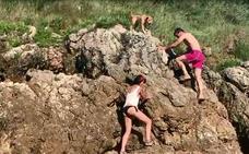 Los bañistas ayudan a un perro 'atrapado' en las rocas de la playa de Santillán