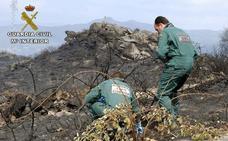 Detenidos 213 incendiarios en los primeros seis meses del año