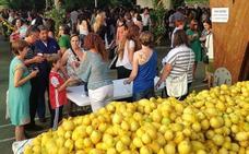 Tres toneladas de limones para la fiesta del sábado en Novales
