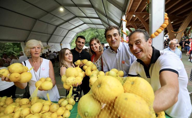 Novales se vuelve amarillo limón