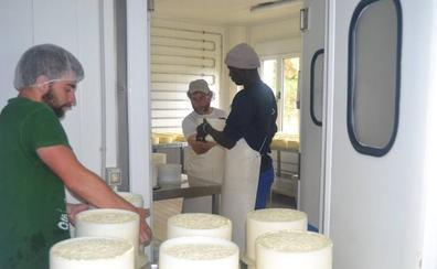 Claves de un queso azul exquisito