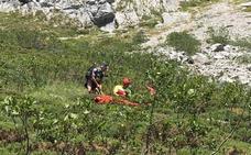 El helicóptero del Gobierno rescata a una senderista con una pierna rota en Picos