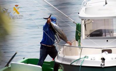 La Guardia Civil denuncia a tres vecinos de Castro Urdiales por la pesca ilegal de bonitos