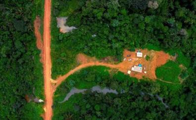 El Amazonas, 'el pulmón del planeta': 5 cosas a tener en cuenta